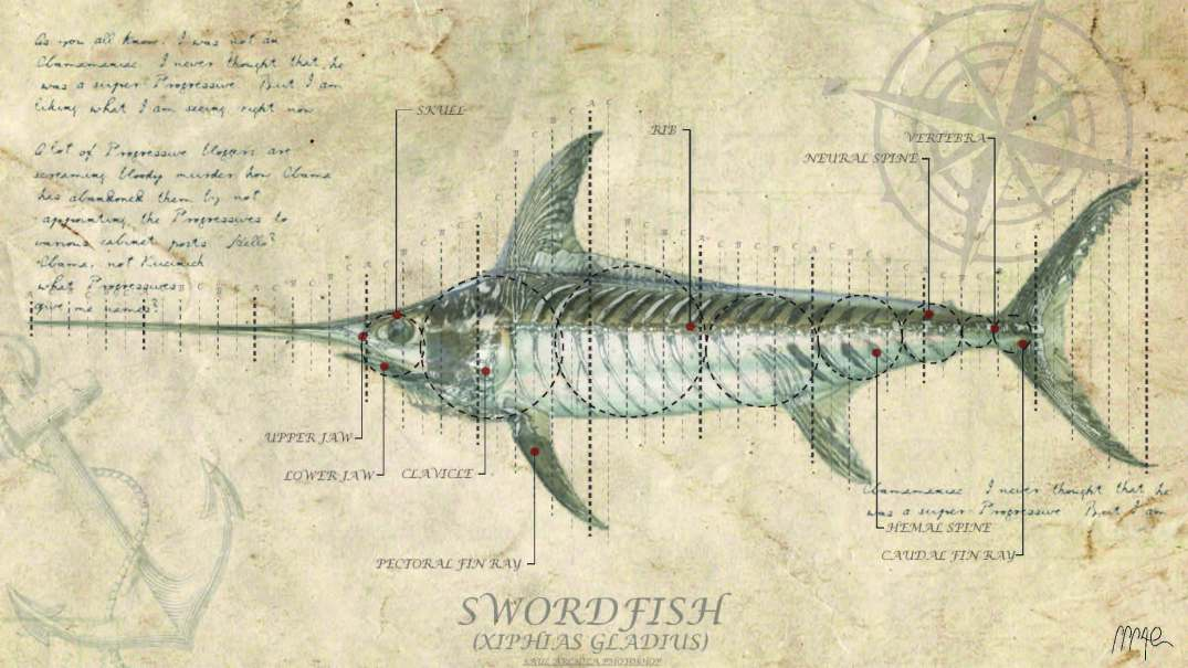 SWORDFISH FISH ANALYSIS