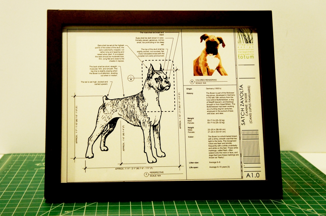 BOXER DOG CUSTOM BLUEPRINT FRAMED PHOTO